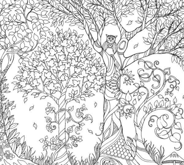 Tajemniczy Ogrod Dla Dzieci